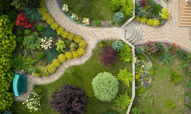 Wat een tuinarchitect voor jou kan betekenen